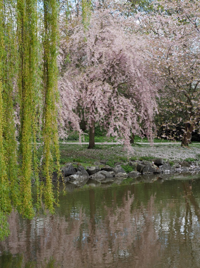 Spring in Bayreuth